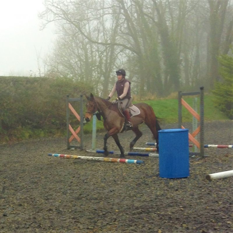 Jumping Clinic